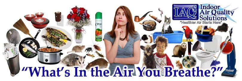 Orlando Indoor Allergen Inspection and Testing, Indoor Air Quality Solutions, IAQS